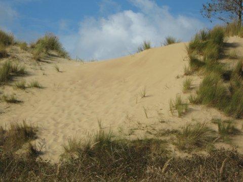 duinen