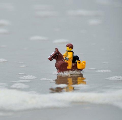 lego paardenvisser